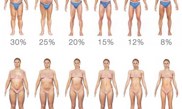 Рост и вес определяют вашу продолжительность жизни
